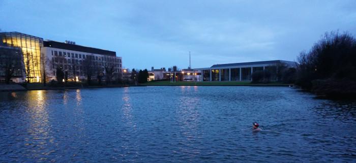UCD Lake
